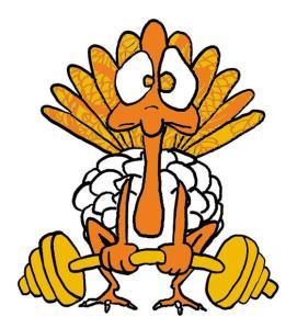 fit turkey